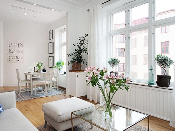 Sử dụng cây xanh trang trí nhà