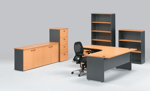 Nên chọn loại tủ văn phòng giá rẻ nào?