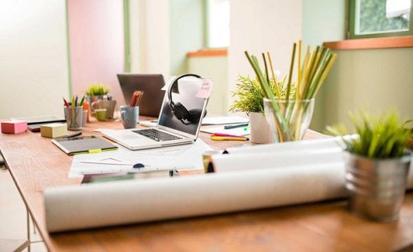 Có thể đặt cây xanh trên bàn làm việc