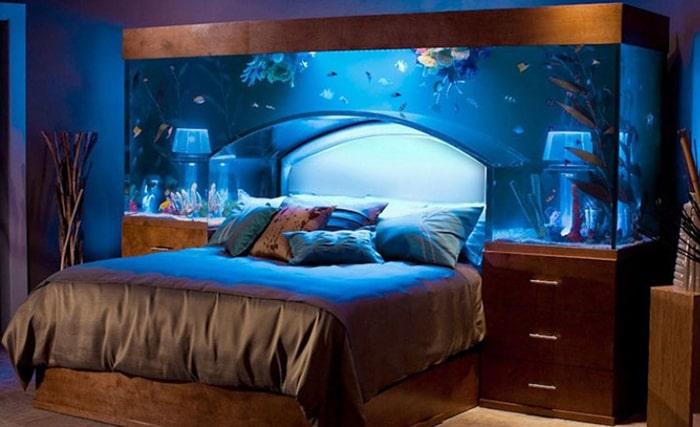 Luồng ý kiến ngược lại cho rằng đặt bể cá trong phòng ngủ giúp phòng sinh động hơn