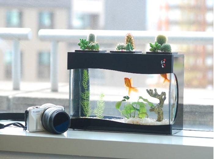 Nên đặt bể cá có kích thước nhỏ, phù hợp với diện tích phòng ngủ và không nên lắp đặt những thiết bị kỹ thuật